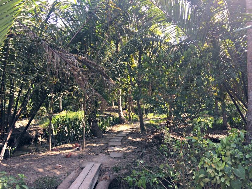 Mekong River - Fruit Farm