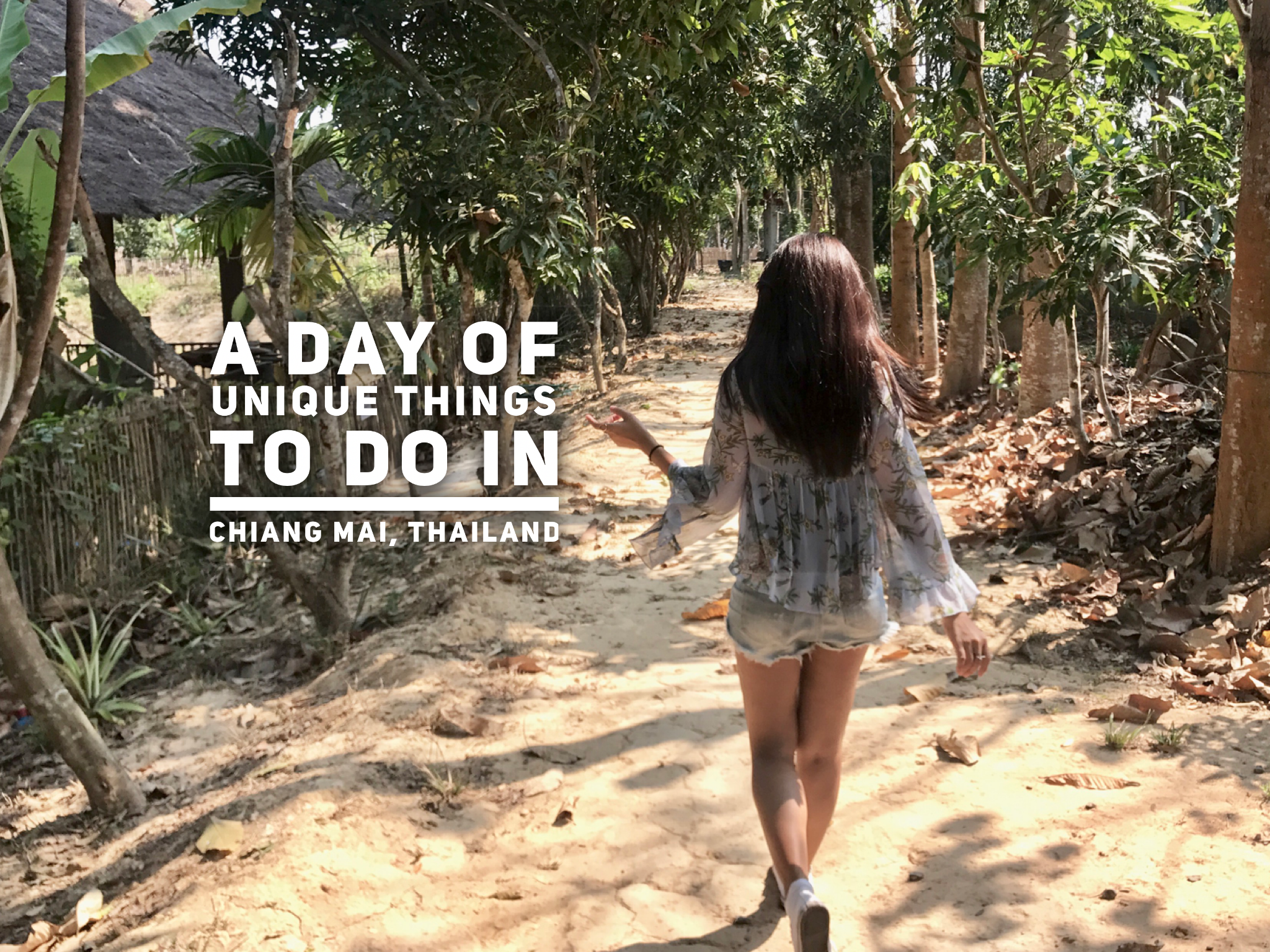 A Day of Unique Things to Do in Chiang Mai, Thailand